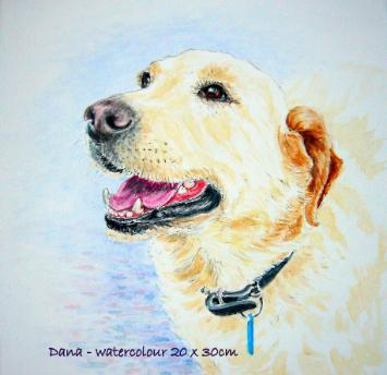 Watercolour pet portrait -Dana
