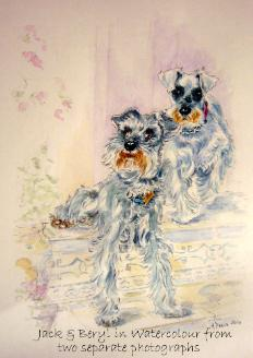 Watercolour pet portrait - Jack and Beryl