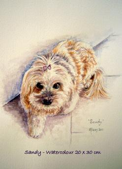 Watercolour pet portrait - Sandy